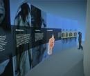 museo_evolucion_humana_35