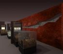 museo_evolucion_humana_43