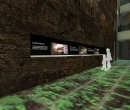 museo_evolucion_humana_7