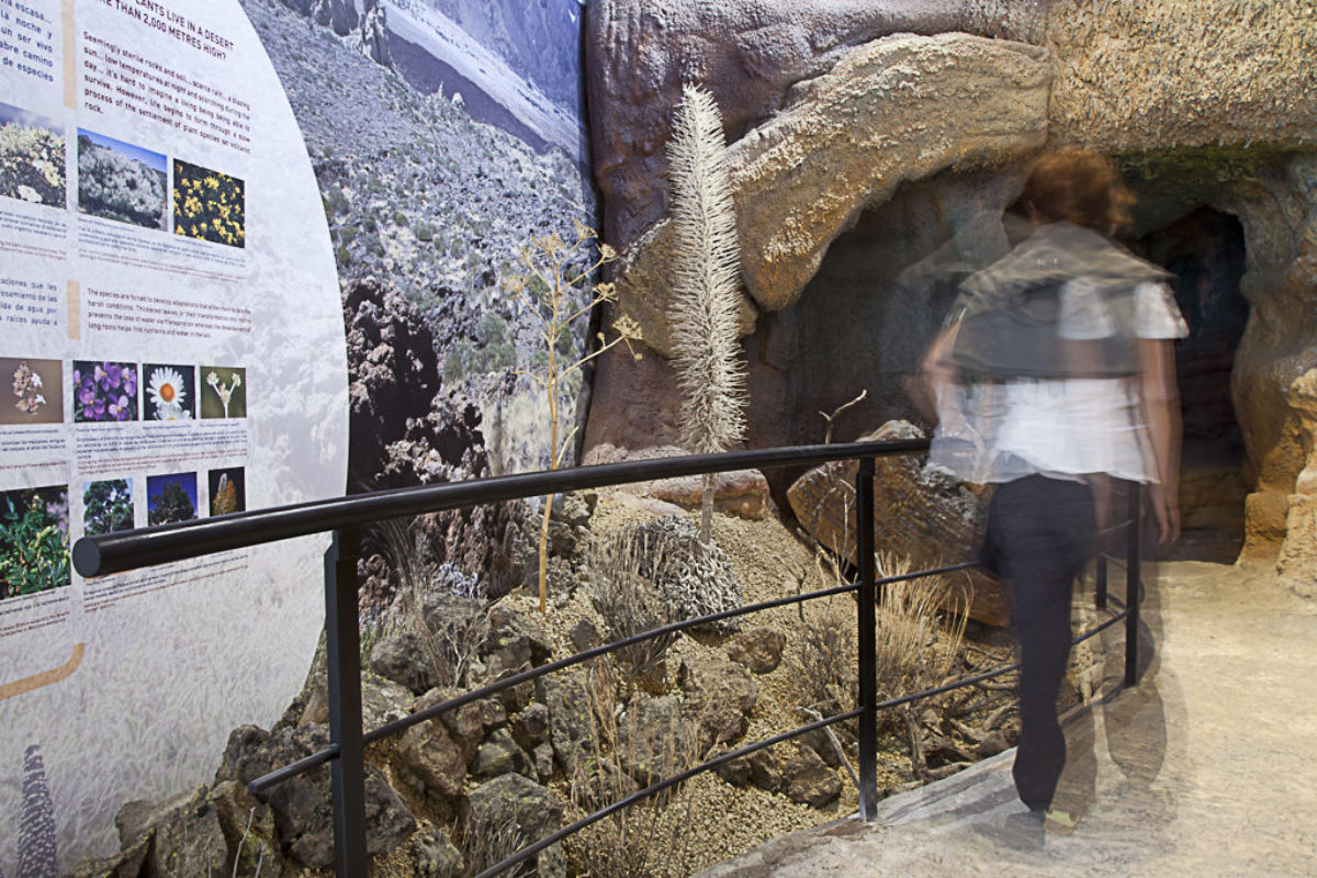 Visitors Center Of Teide's National Park in The Orotava